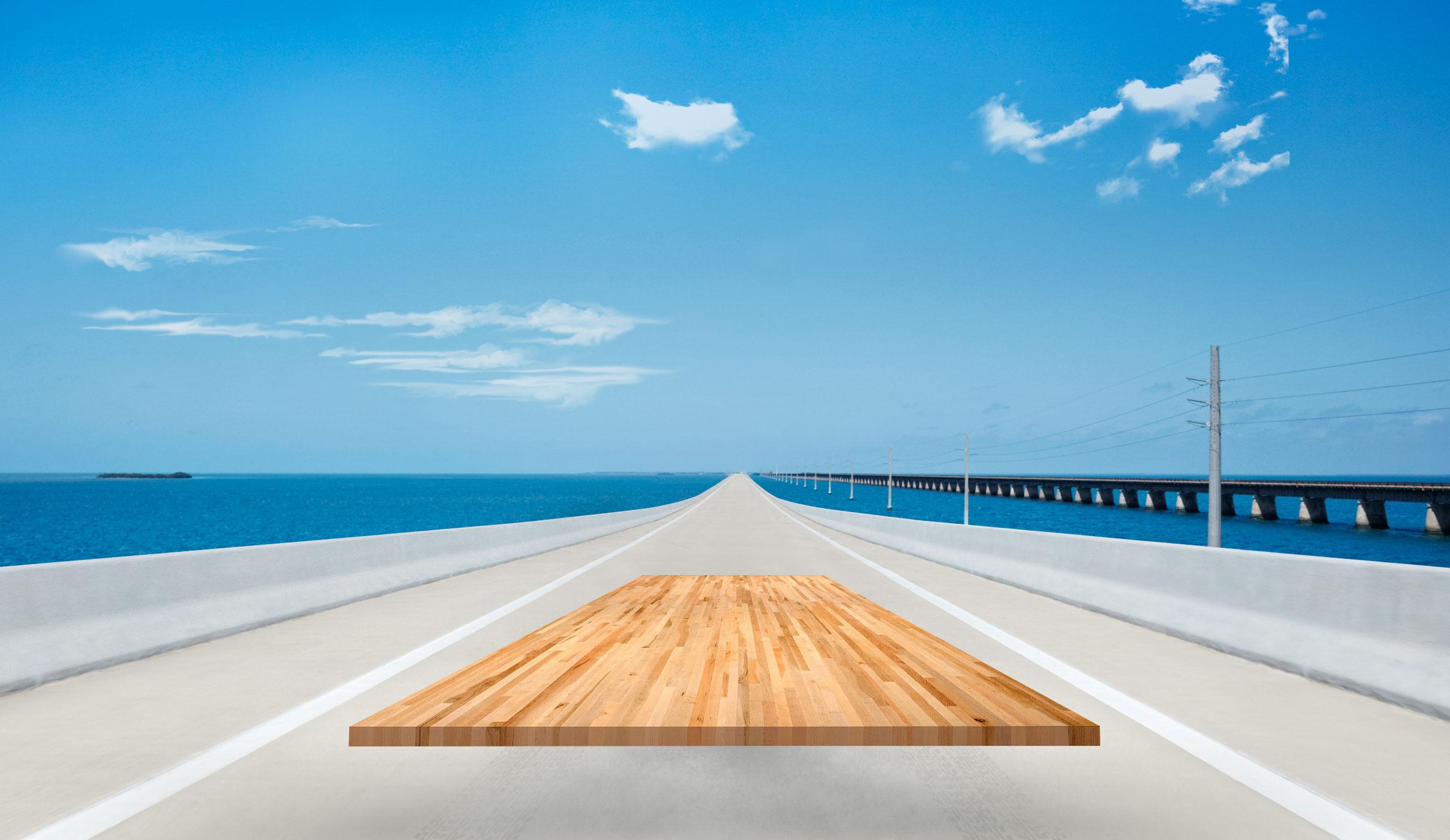 image slider 5 - Floride